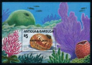 [99625] Barbuda 1986 Marine Life Sea shell OVP Barbuda airmail sheet MNH