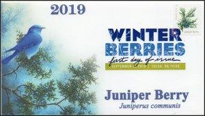 19-250, 2019, Winter Berries, Digital Color Postmark, First Day Cover, Juniper B