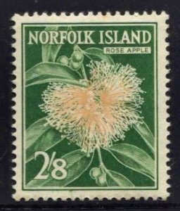 STAMP STATION PERTH Norfolk Island #39 Flower MNH -CV$3.50