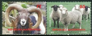 270 - MACEDONIA 2018 - Fauna - Sheep - MNH Set