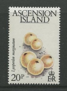Ascension - Scott 326 - General Issue -1983 - MNH - Single 20p Stamp