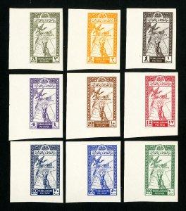 Jordan Stamps # 221-9 VF Scarce imperfs OG NH
