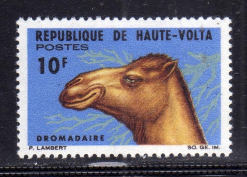 ALTO VOLTA HAUTE VOLTA UPPER VOLTA BURKINA FASO 1966 FAUNA ANIMALS ANIMAUS AN...