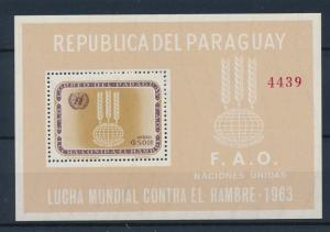 [35564] Paraguay 1963 Freedom from hunger FAO Perforated Souvenir Sheet MNH