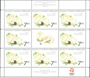 Greenland #476a, 477a, Complete Set(2), Sheets, 2006, Mushrooms, Never Hinged