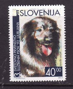 Slovenia MNH 144 Slovenian Sheep Dog