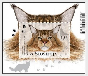 Slovenia 2020 The Domestic Cats S/S MNH