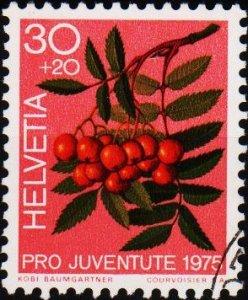 Switzerland. 1975 30c+20c. S.G.J251  Fine Used