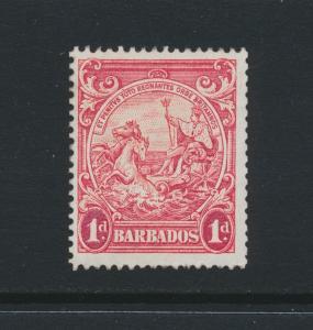 BARBADOS 1939, 1d PERF 13½x13, VF MNH SG#249 CAT£275 (SEE BELOW)