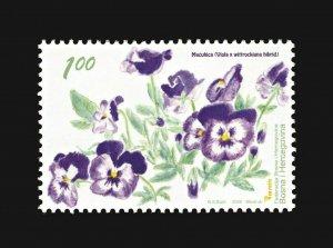 BOSNIA&HERZEGOVINA/2009, FLORA - Pansy (Viola x wittrockiana hybrid), MNH