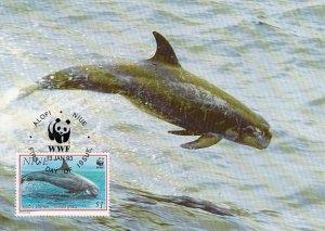 Niue 1993 Maxicard Sc #654 $1 Risco's dolphin WWF