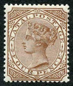 Natal SG102 4d Brown Cat 18 pounds M/M Fine and Fresh