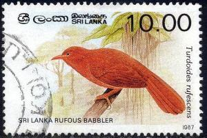 Bird, Sri Lanka Rufous Babbler, Sri Lanka stamp SC#839 used