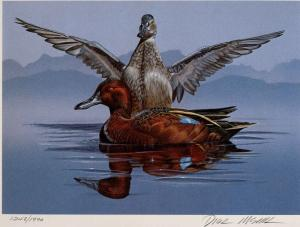 NEVADA #2 1980 STATE DUCK STAMP PRINT CINNAMON TEAL by Dick McRill List $275