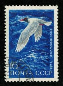 1972, Bird, USSR, 16kop (TS-218)