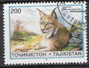 Tajikistan #97 Wild Cats WWF CTO