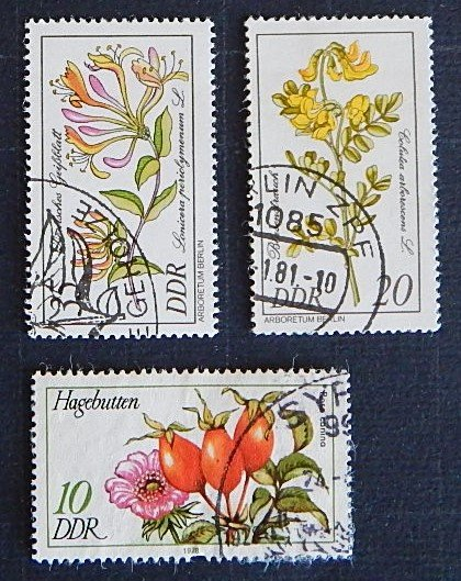 Flowers, DDR (1547-Т)