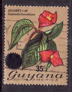 Guyana-Sc#234-used set-35c on 60c Soldiers Cap-Flowers-1976-