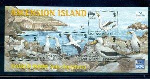 Ascension Is. - Sc# 842a. 2004 Birds, MNH Souvenir Sheet. $10.00.