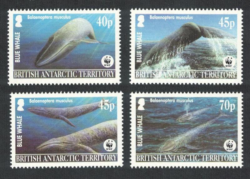 BAT WWF Blue Whale 4v 2003 MNH SG#361-364 MI#353-356 SC#326-329 CV?8.50
