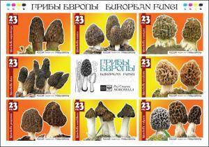 RUSSIA LOCAL SHEET IMPERF MUSHROOMS
