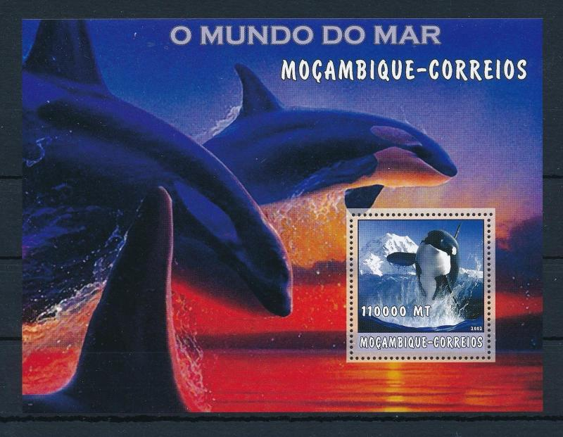 [31505] Mozambique 2002 Marine Life Whales MNH Sheet