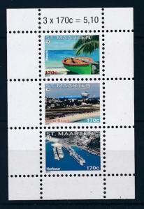 [SM044] St. Martin Maarten 2011 Tourism Souvenir Sheet MNH