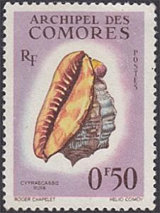 Comoro Islands # 48 used ~ 50¢ Sea Shell