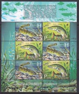Belarus, Fauna, Fishes MNH / 2011
