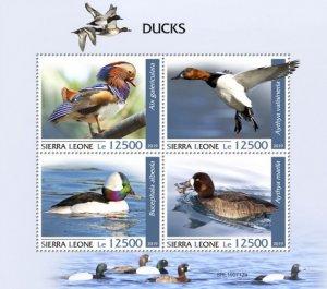 SIERRA LEONE - 2019 - Ducks - Perf 4v Sheet - MNH