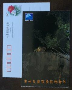 Pseudois nayaur,blue sheep,nat'l key protection wild animals,CN01 night zoo PSC