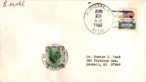 United States Colorado Homelake 81135 1968 4-bar  DPO Philatelic.