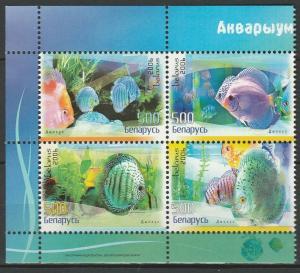 Belarus 2006 Fauna Fish 4 MNH stamps