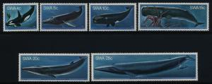 South West Africa 437-42 MNH Whales, Squid