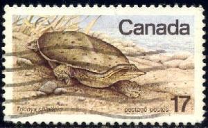 Soft-shelled Turtle, Endangered Wildlife, Canada SC#813 used
