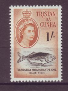 J20974 Jlstamps 1960 tristan da cunha mnh #38 bluefish