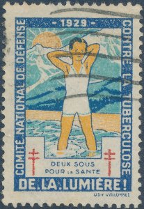Stamp Label France Exposition 1929 Conquer Tuberculosis Cinderella Used
