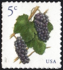 SC#5177 5¢ Grapes Single (2017) SA
