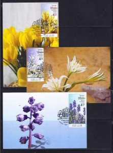 ISRAEL 2019 AUTUMN FLOWERS SET OF 3 STAMPS MAXIMUM CARD FLORA