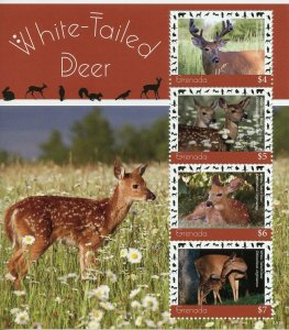 Grenada 2019 MNH White-Tailed Deer 4v M/S Mammals Wild Animals Stamps