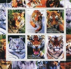 Tajikistan  2000   TIGERS - MAMMALS - FAUNA Sheetlet (6) MNH