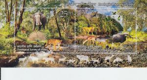 2016 India Zoological Survey  SS (Scott 2773a) mnh
