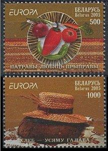 2005 Belarus 593-594 Europa CEPT