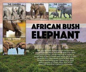 2021/04 - GAMBIA - ELEPHANTS             5V  complet set    MNH ** T
