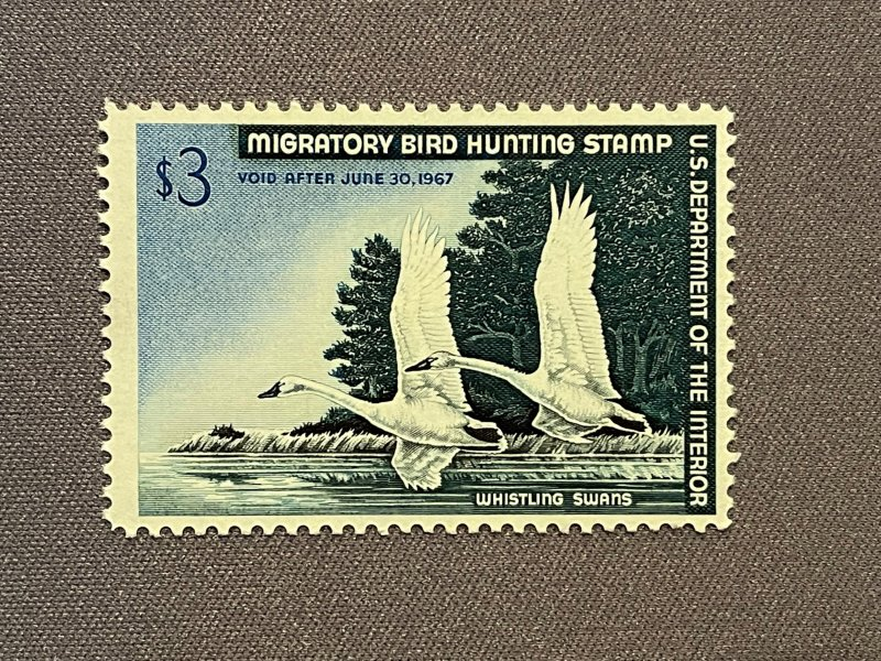 RW33, OGNH, Whistling Swan, Fine