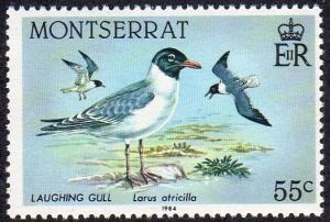 Montserrat 530 - Mint-NH - 55c Laughing Gulls (1984) (cv $1.20)