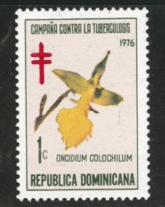 Dominican Republic Scott RA75 MH* 1976 Postal tax stamp