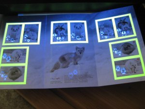 Canada tag offset print error 2021 Snow mammals booklet affects 4 stamps, cover