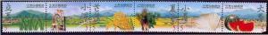 Taiwan Stamp Sc 3286a-3286f 4 season MNH