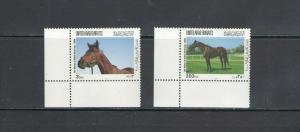 UNITED ARAB EMIRATES: Sc.676-77 / *** HORSE BREED ***/  MNH Set